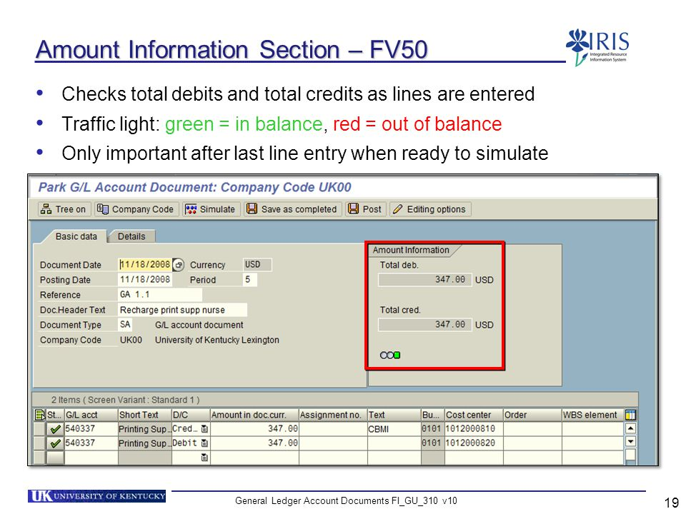 Amount Information Section – FV50