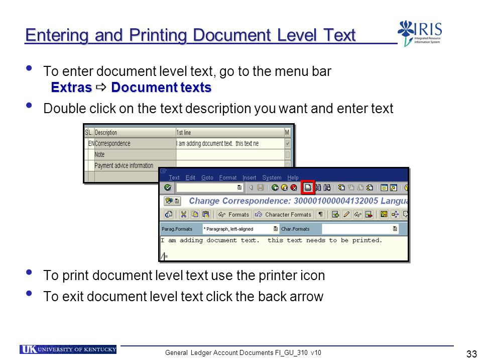 Entering and Printing Document Level Text