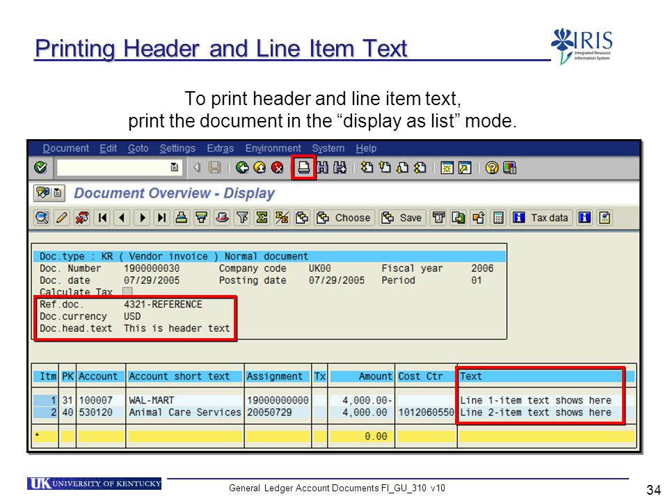 Printing Header and Line Item Text