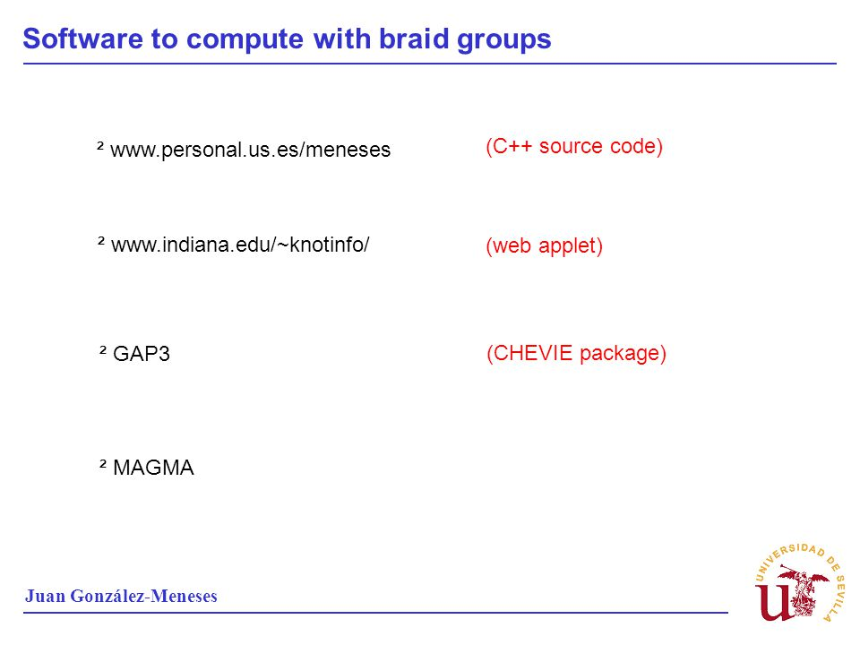 Software to compute with braid groups
