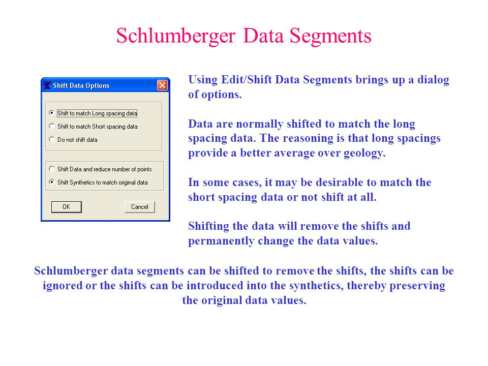 Schlumberger Data Segments