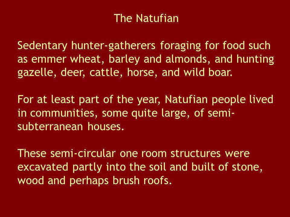 The Natufian
