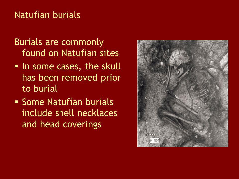 Natufian burials Burials are commonly found on Natufian sites. In some cases, the skull has been removed prior to burial.