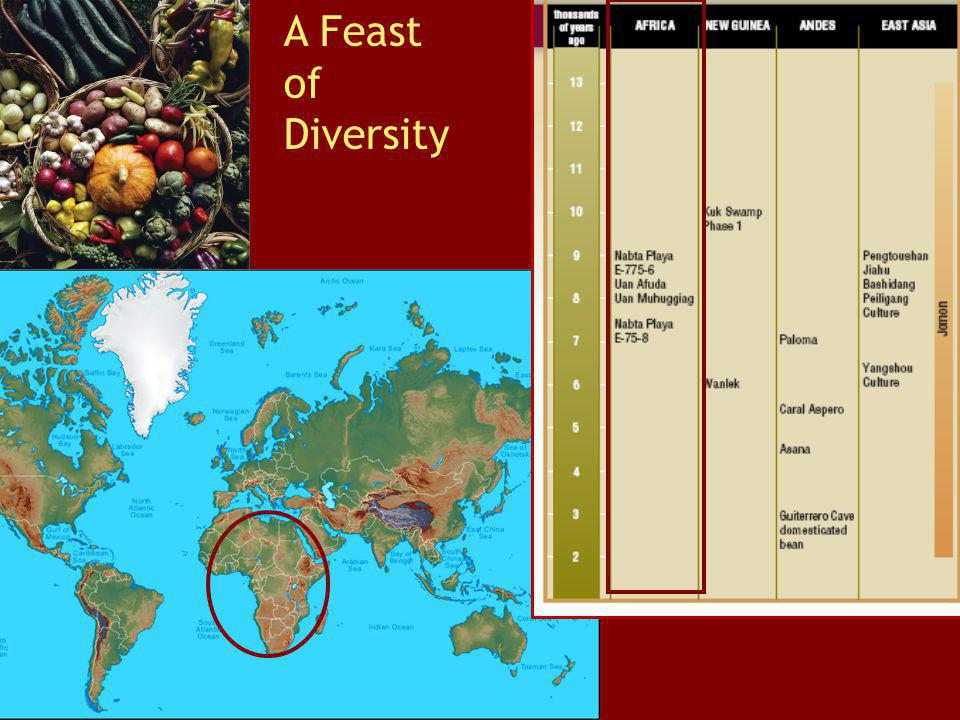 A Feast of Diversity