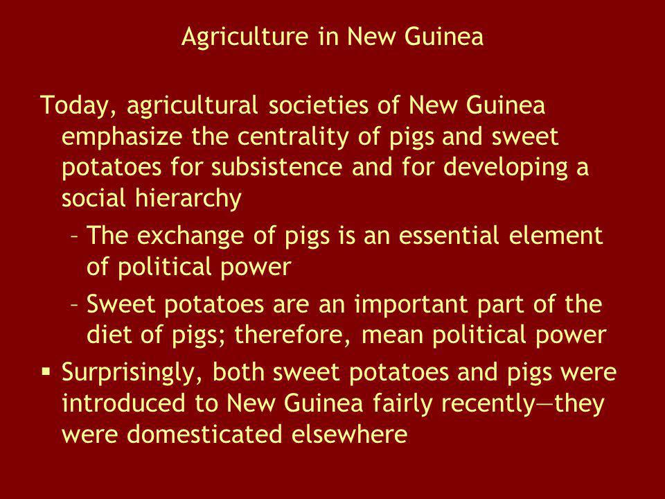Agriculture in New Guinea