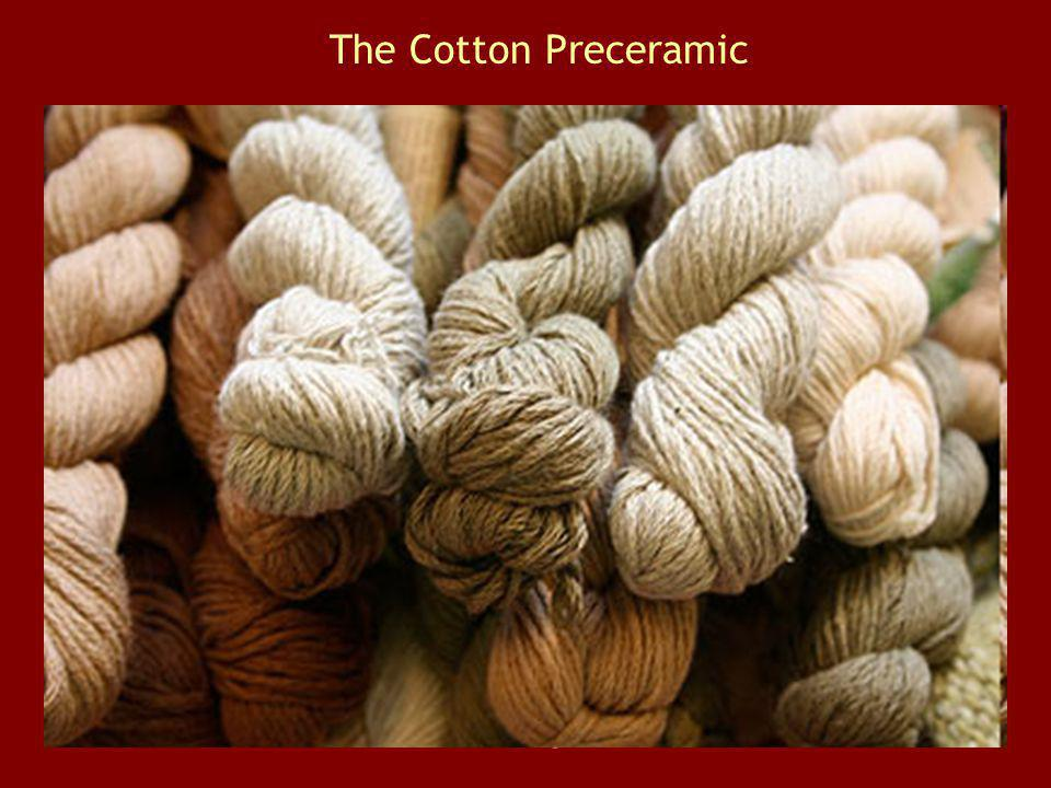 The Cotton Preceramic Prevalence of cotton seeds and absence of pottery on its sites.