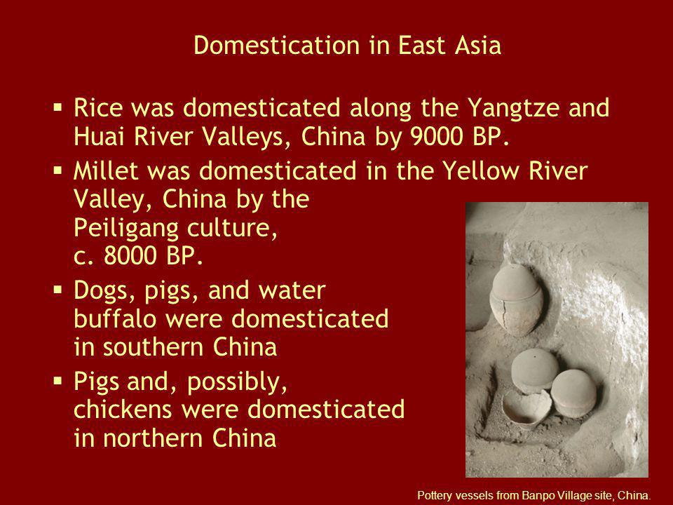 Domestication in East Asia