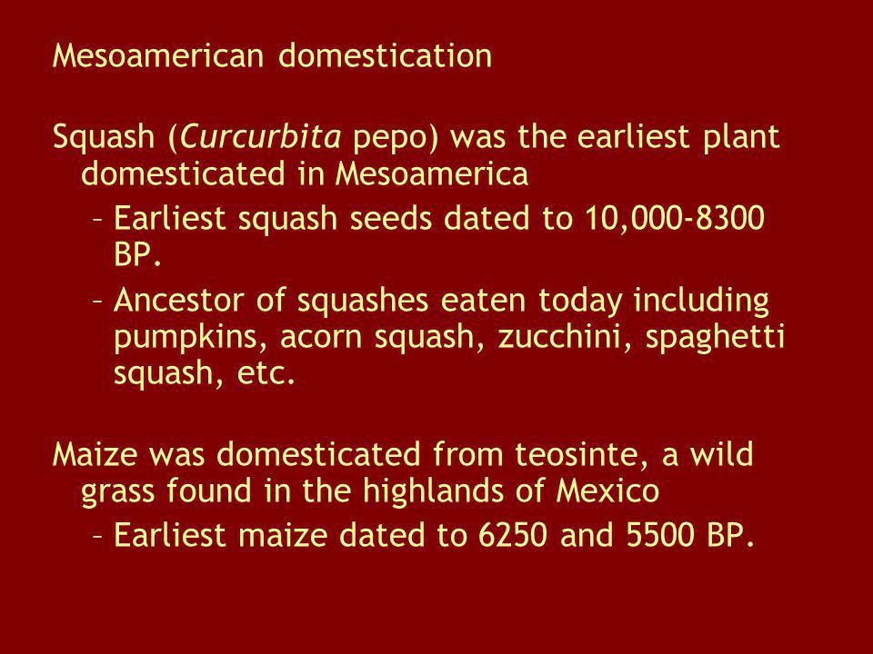 Mesoamerican domestication