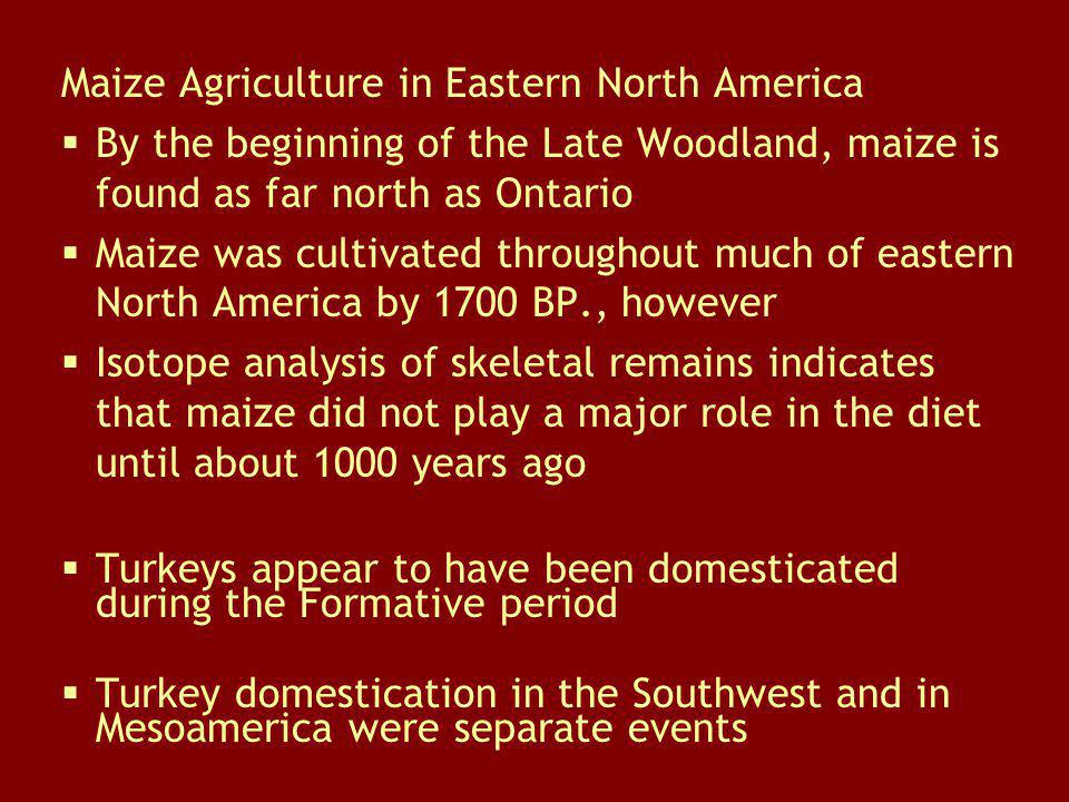 Maize Agriculture in Eastern North America