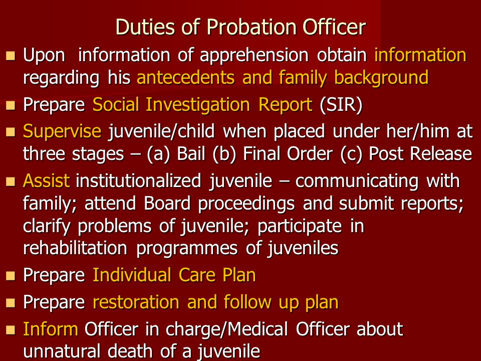Duties of Probation Officer