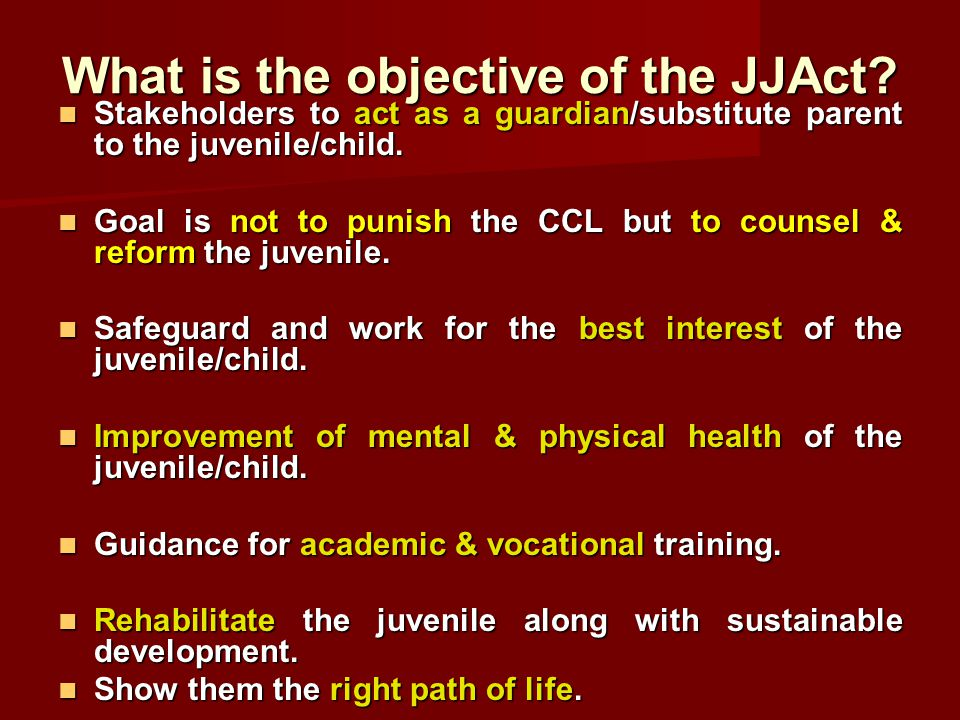 What is the objective of the JJAct