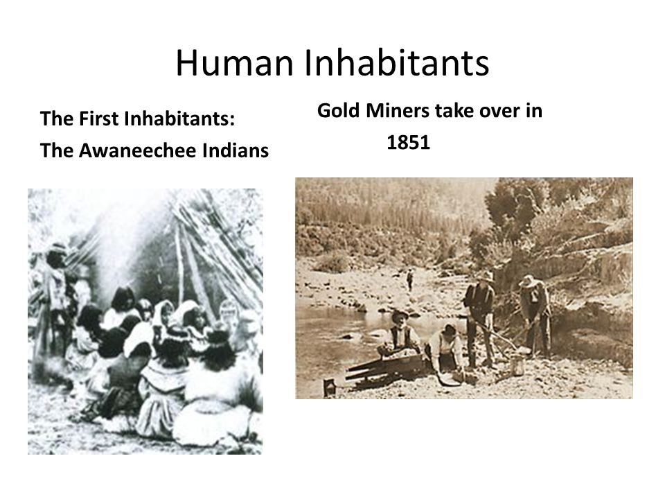 Human Inhabitants The First Inhabitants: Gold Miners take over in