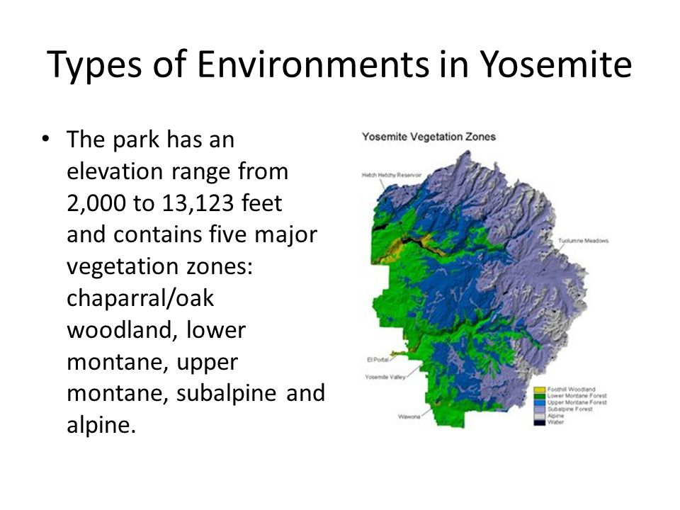 Types of Environments in Yosemite