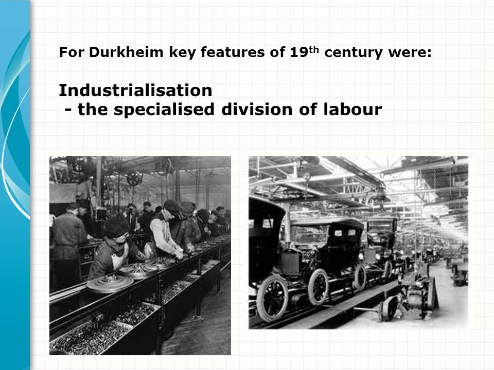 - the specialised division of labour