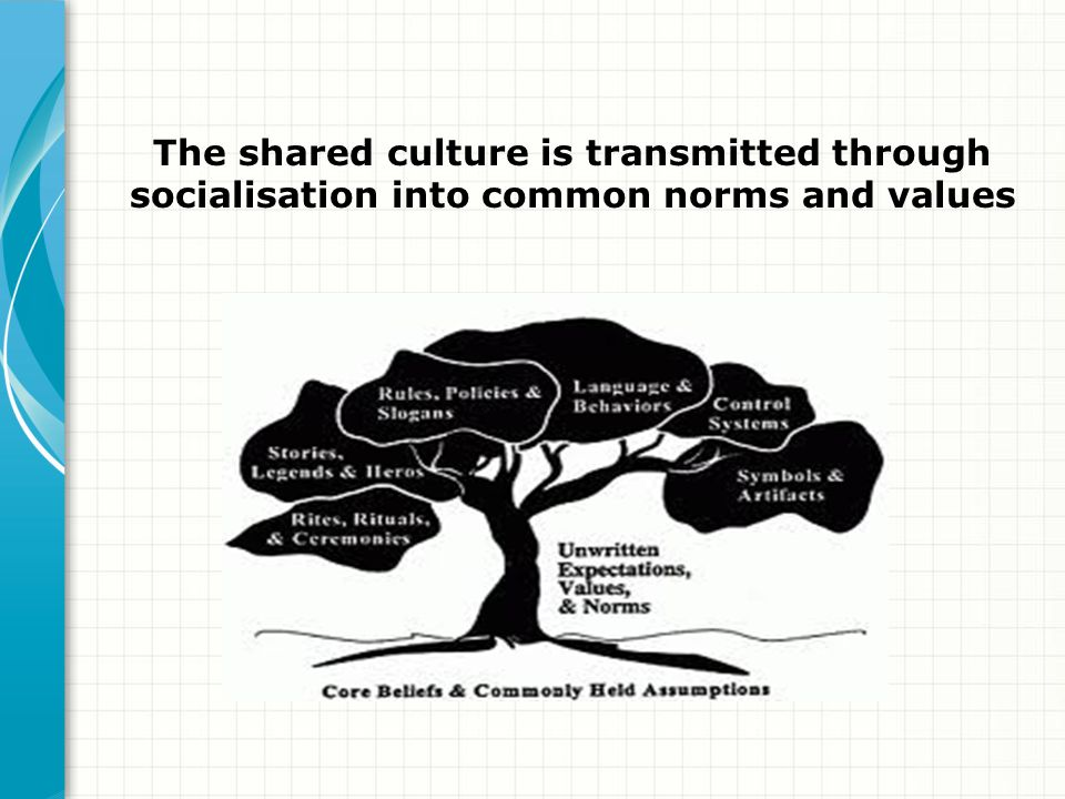 The shared culture is transmitted through socialisation into common norms and values