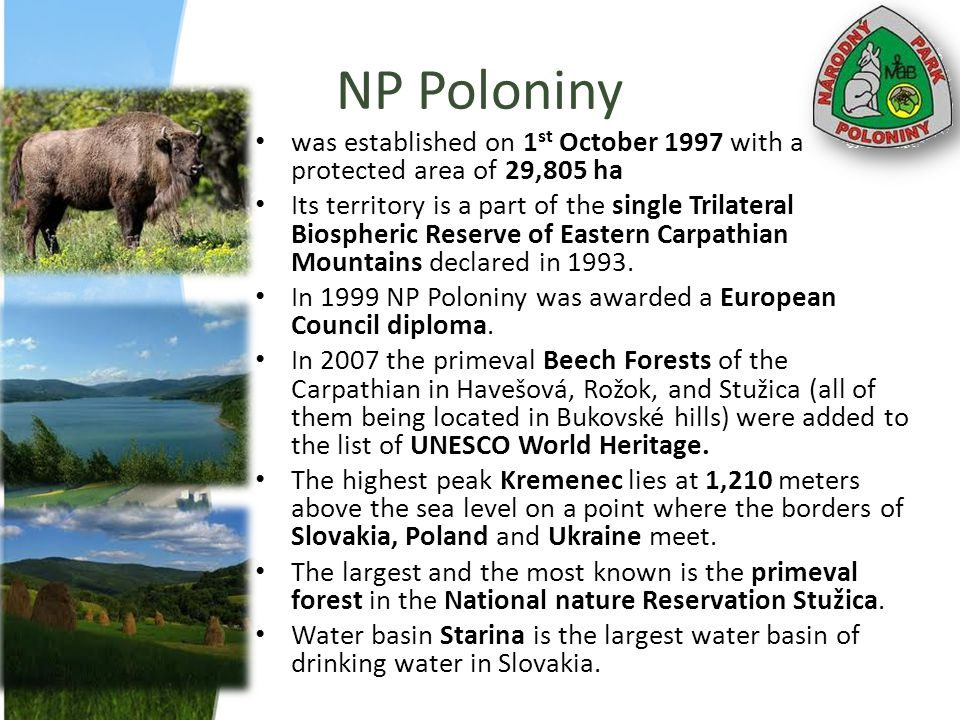 NP Poloniny was established on 1st October 1997 with a protected area of 29,805 ha.