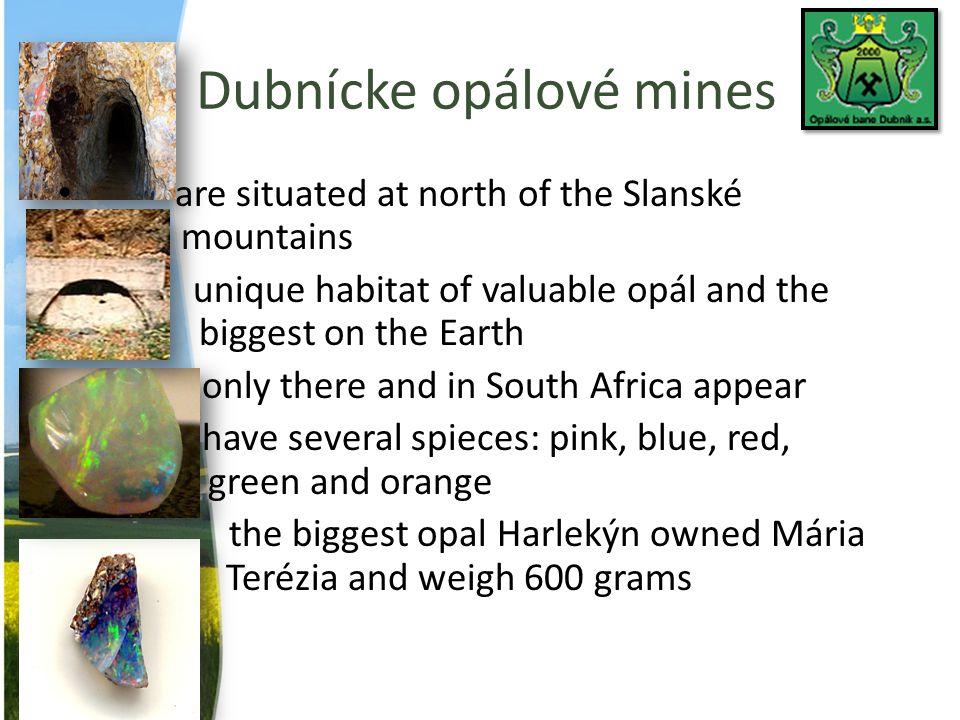 Dubnícke opálové mines
