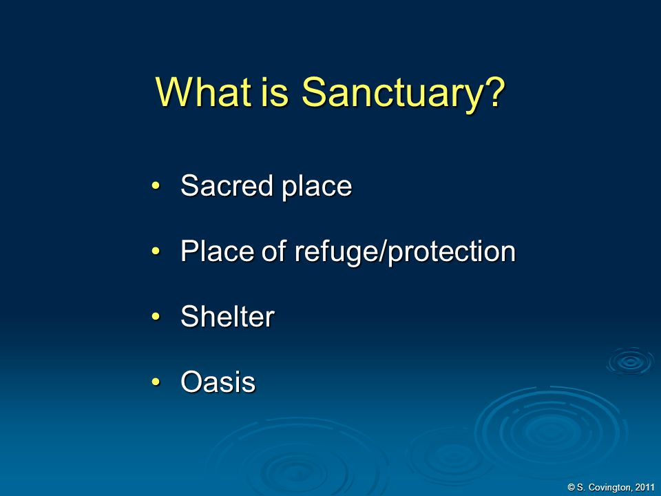 What is Sanctuary Sacred place Place of refuge/protection Shelter