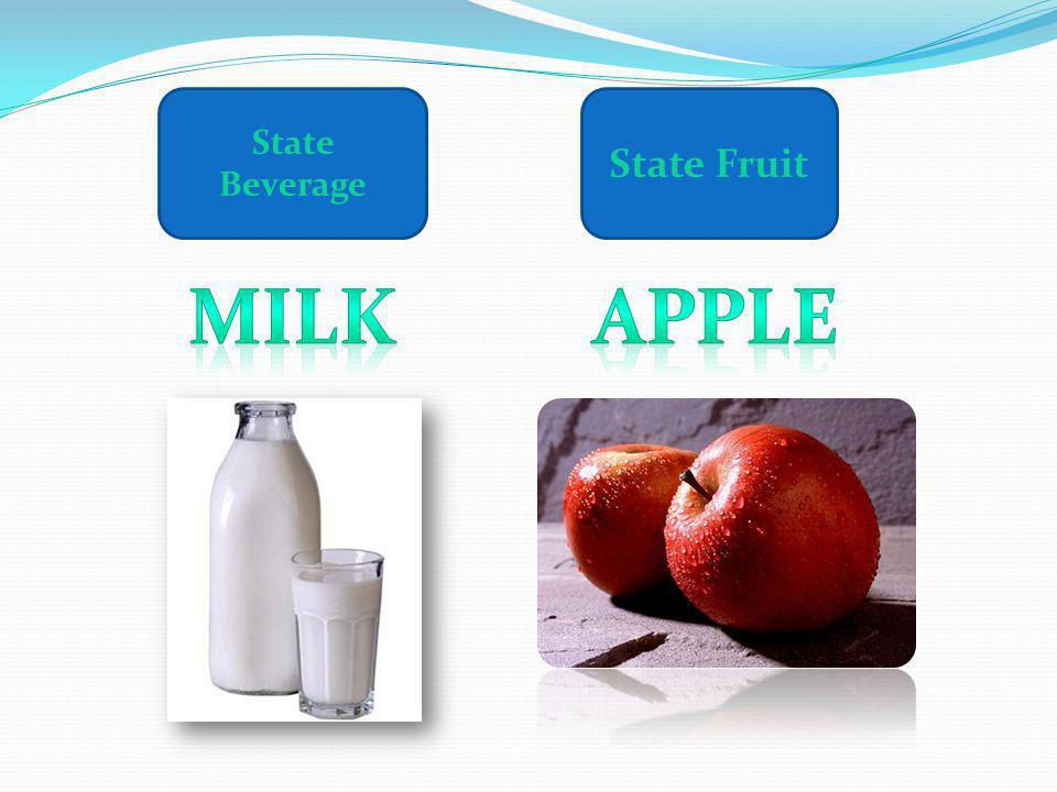 State Beverage State Fruit Milk Apple