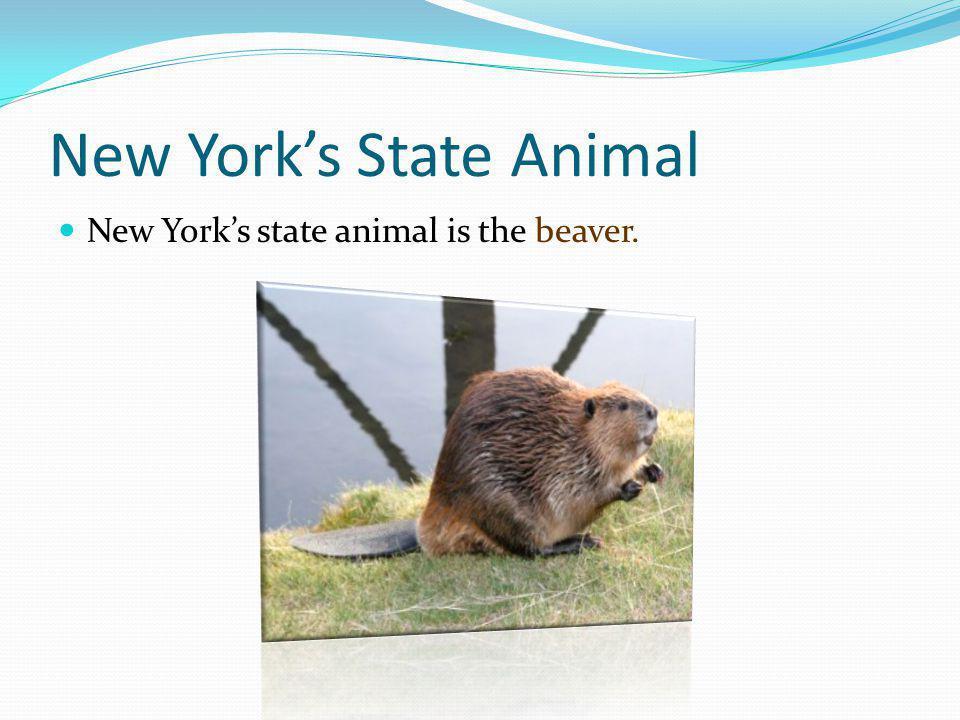 New York's State Animal