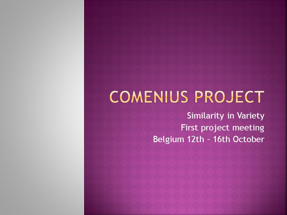 Comenius project Similarity in Variety First project meeting