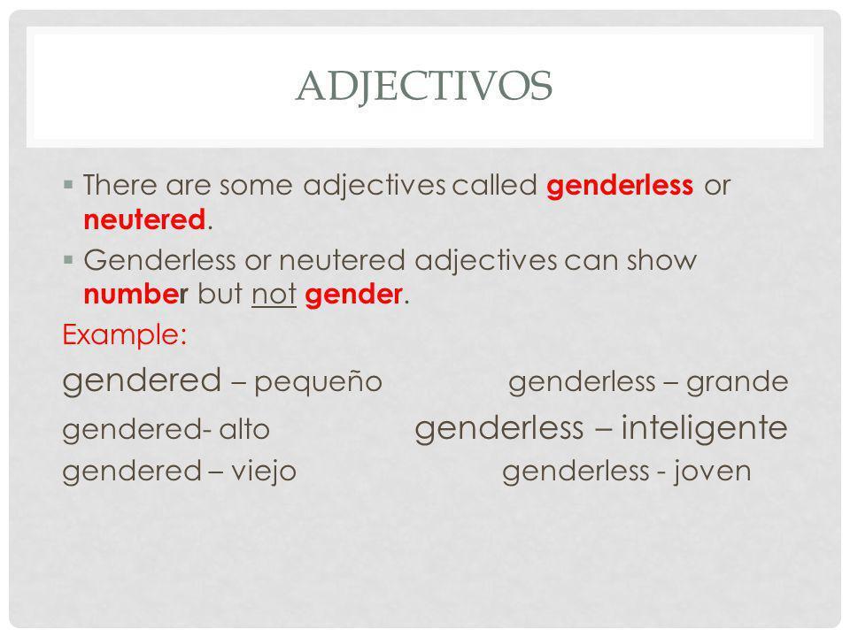adjectivos gendered – pequeño genderless – grande