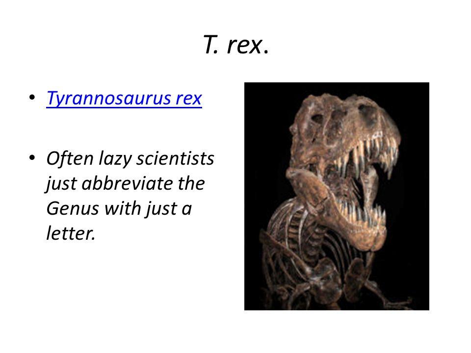 T. rex. Tyrannosaurus rex