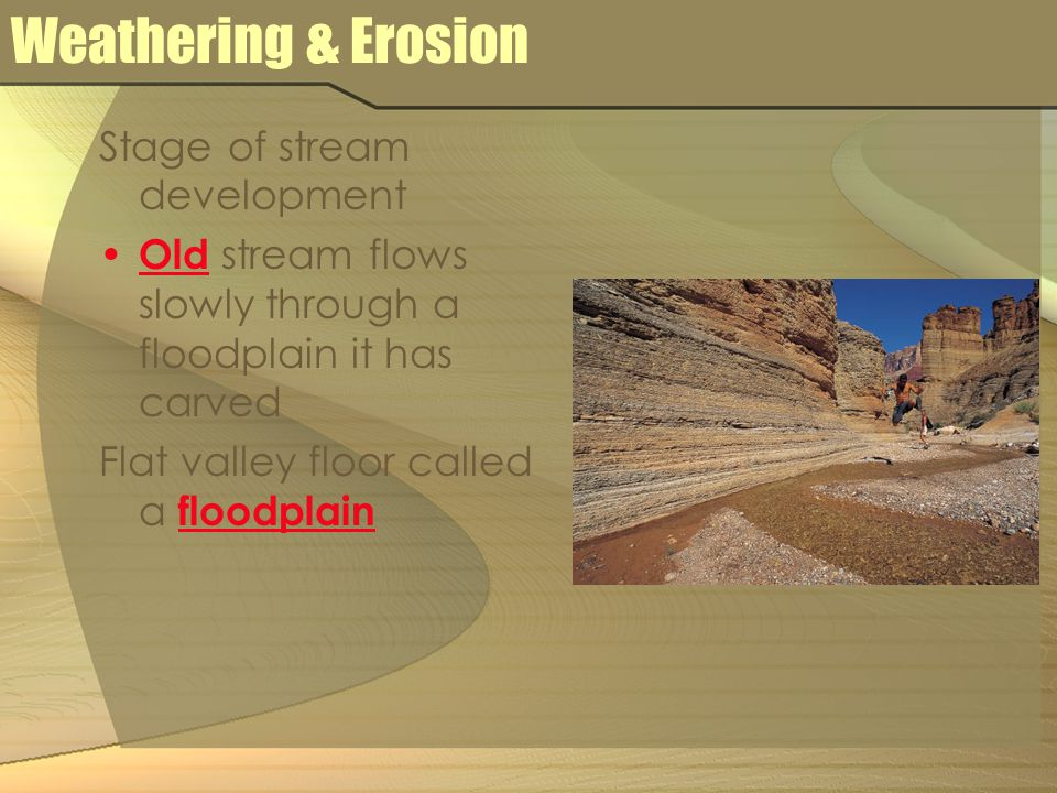 Weathering & Erosion Stage of stream development