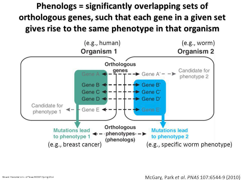 Phenologs = significantly overlapping sets of