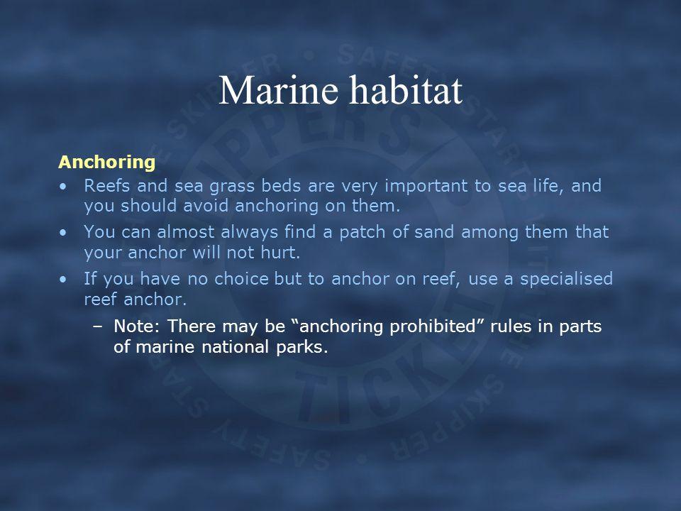 Marine habitat Anchoring