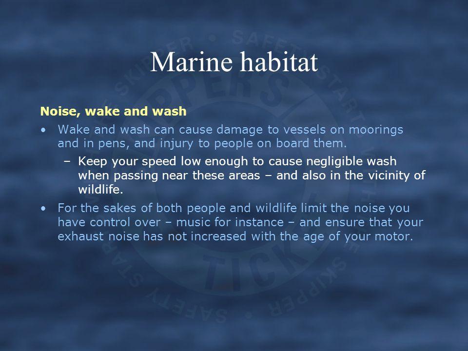 Marine habitat Noise, wake and wash
