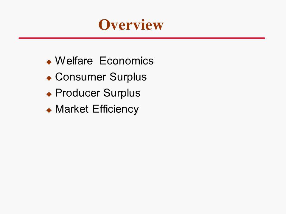 Overview Welfare Economics Consumer Surplus Producer Surplus