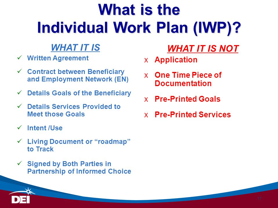 What is the Individual Work Plan (IWP)