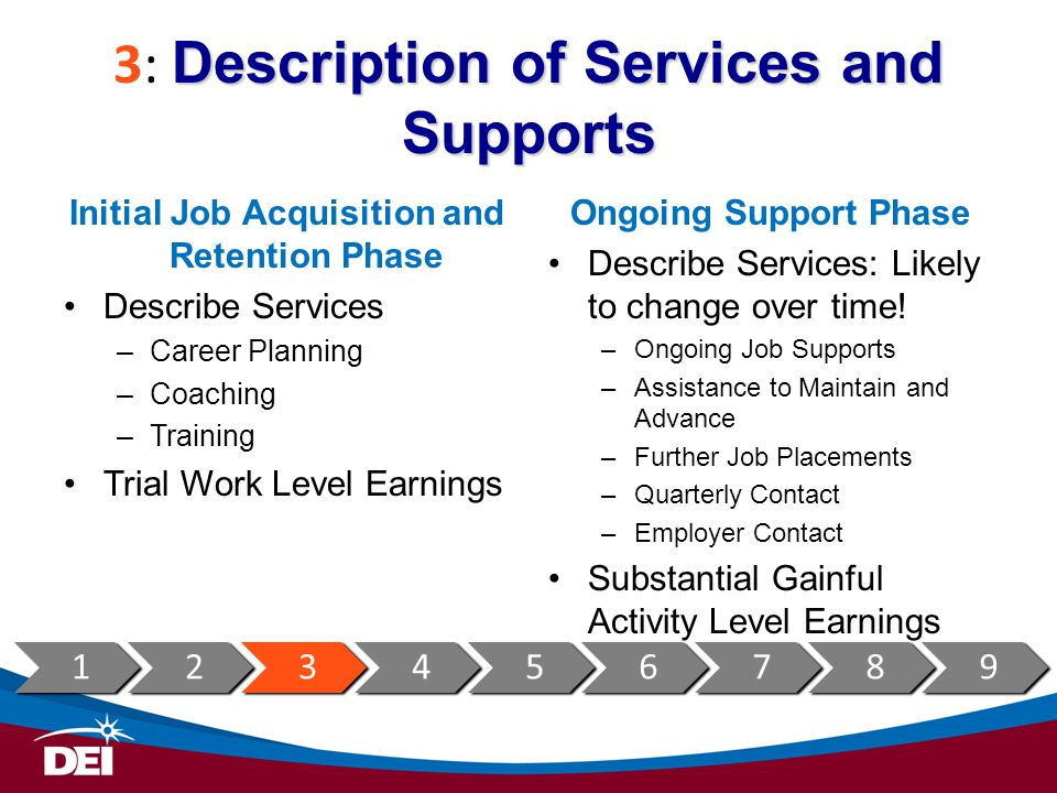 3: Description of Services and Supports