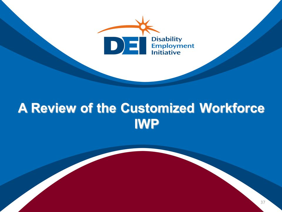 A Review of the Customized Workforce IWP