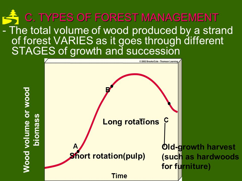 Wood volume or wood biomass