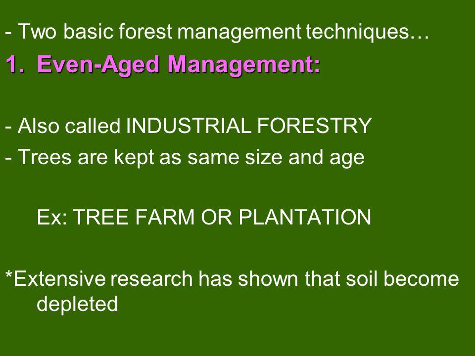 Even-Aged Management: