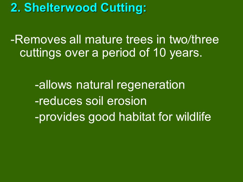 2. Shelterwood Cutting: -Removes all mature trees in two/three cuttings over a period of 10 years. -allows natural regeneration.