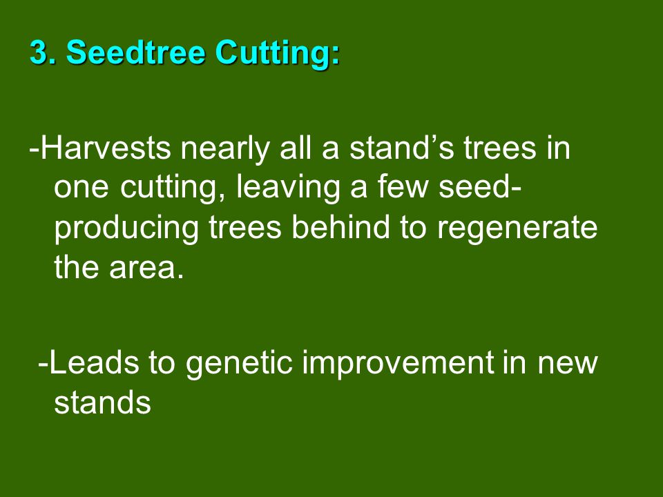 3. Seedtree Cutting: -Harvests nearly all a stand's trees in one cutting, leaving a few seed-producing trees behind to regenerate the area.