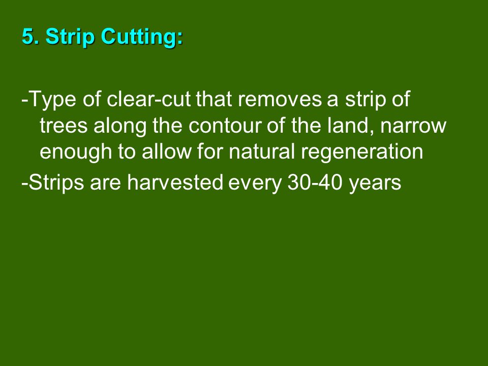 5. Strip Cutting: -Type of clear-cut that removes a strip of trees along the contour of the land, narrow enough to allow for natural regeneration.