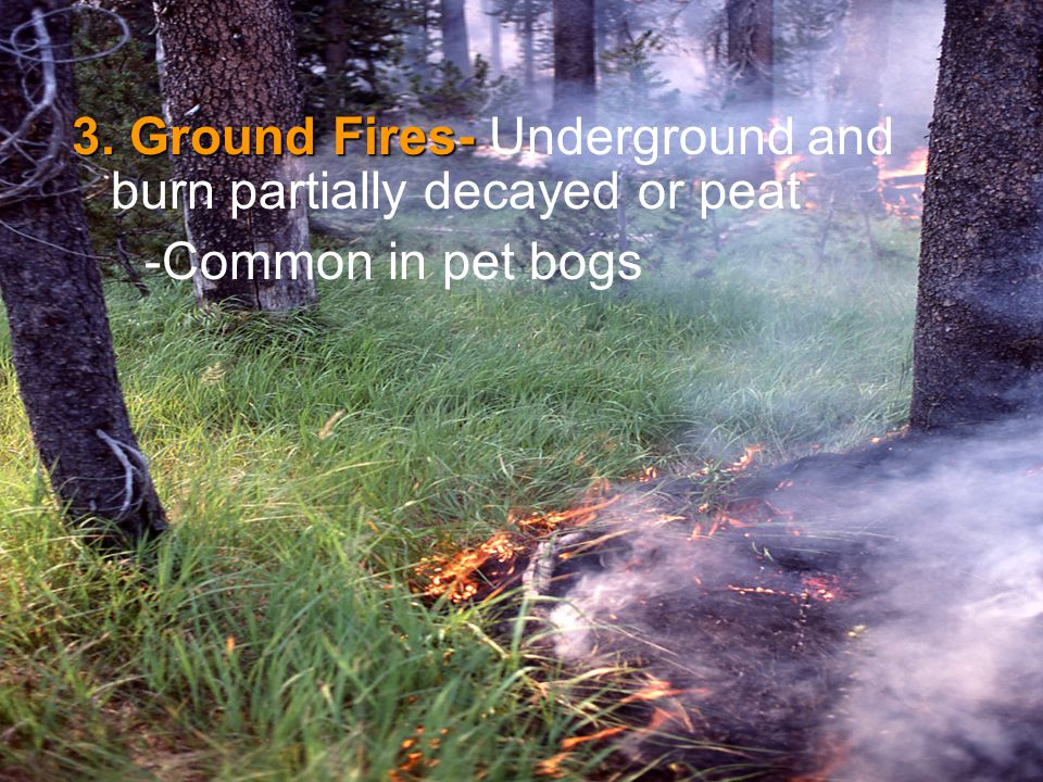 3. Ground Fires- Underground and burn partially decayed or peat