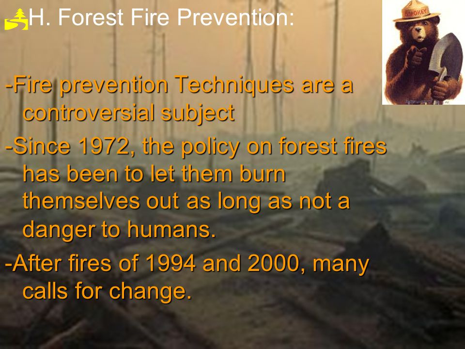 H. Forest Fire Prevention: