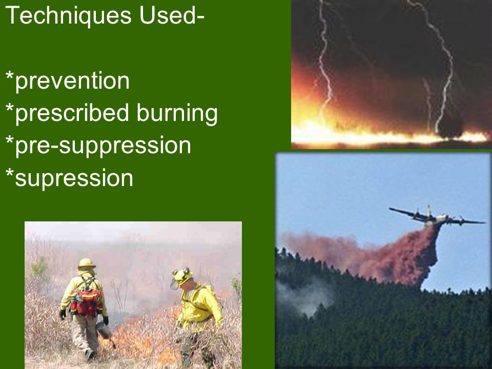 Techniques Used- *prevention *prescribed burning *pre-suppression *supression