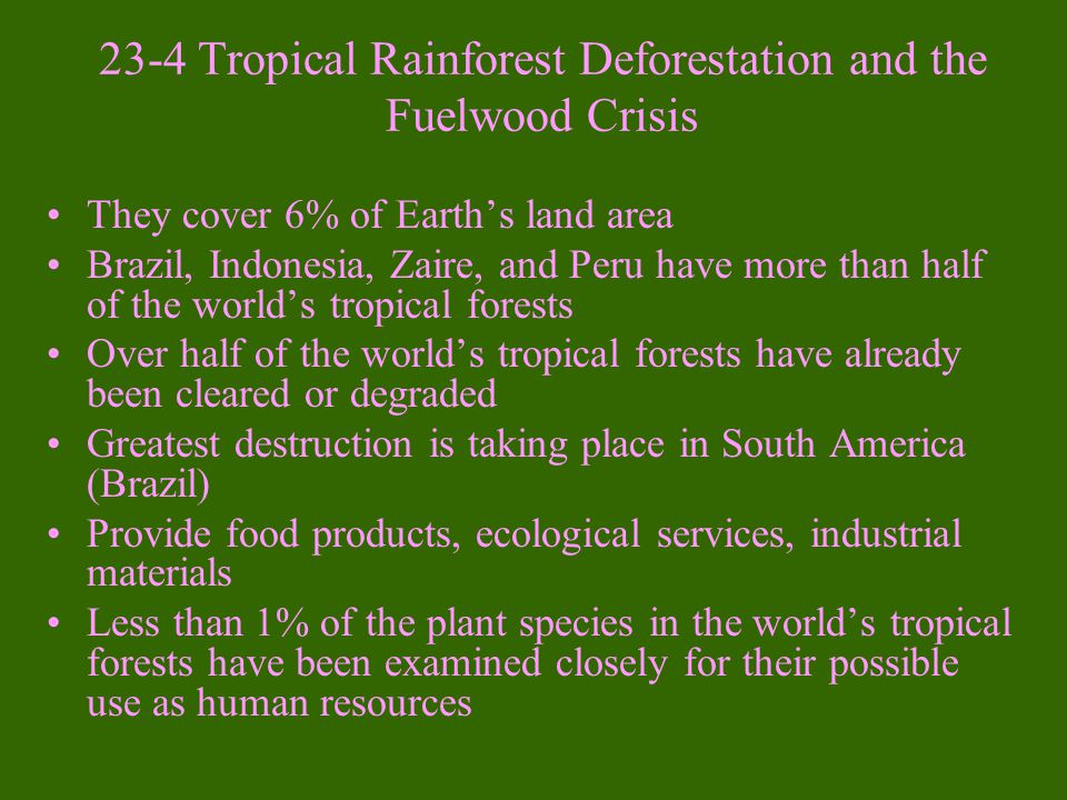 23-4 Tropical Rainforest Deforestation and the Fuelwood Crisis
