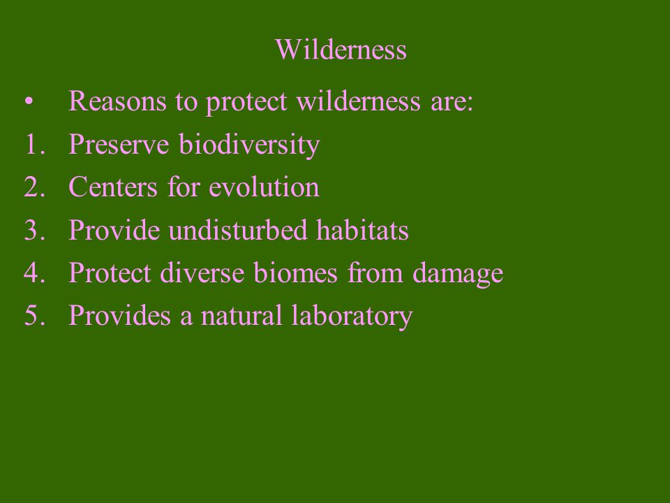 Wilderness Reasons to protect wilderness are: Preserve biodiversity. Centers for evolution. Provide undisturbed habitats.