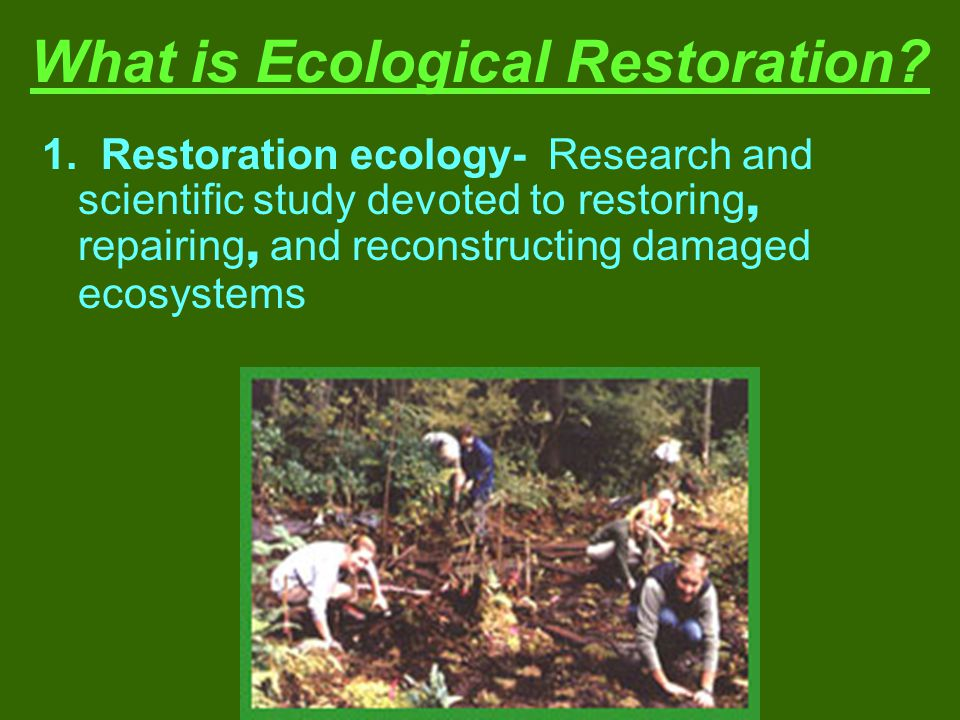 What is Ecological Restoration