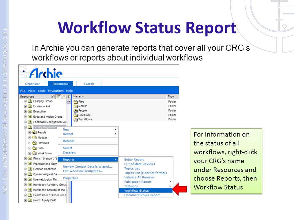 Workflow Status Report
