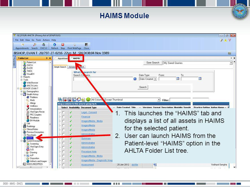 HAIMS Module This launches the HAIMS tab and displays a list of all assets in HAIMS for the selected patient.