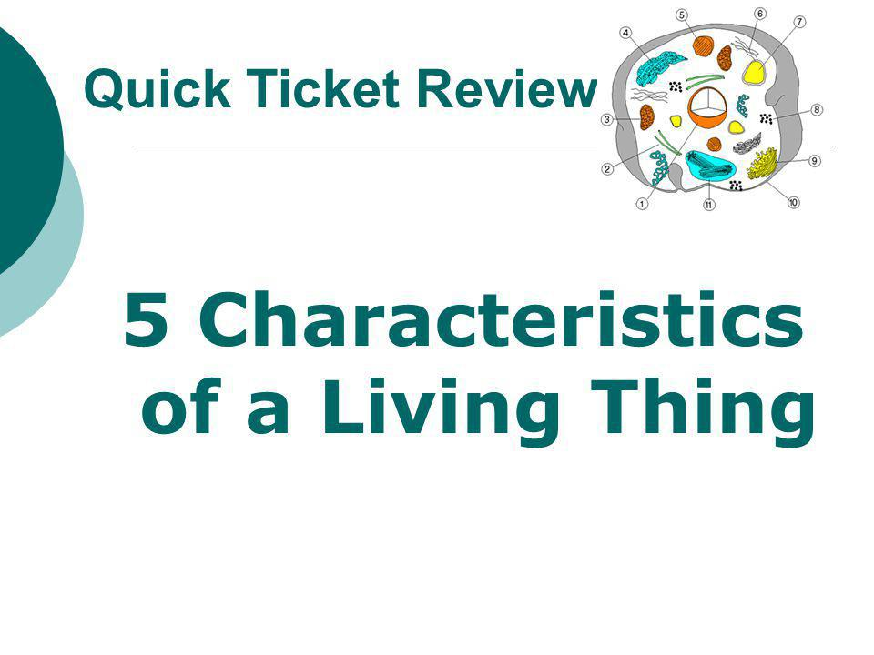 5 Characteristics of a Living Thing