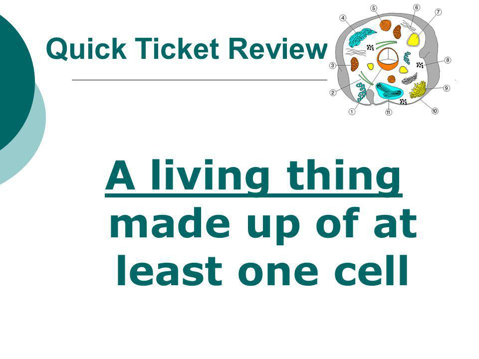 A living thing made up of at least one cell